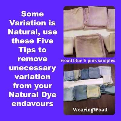 Top Five Tips for Naturally Dyeing Yardage