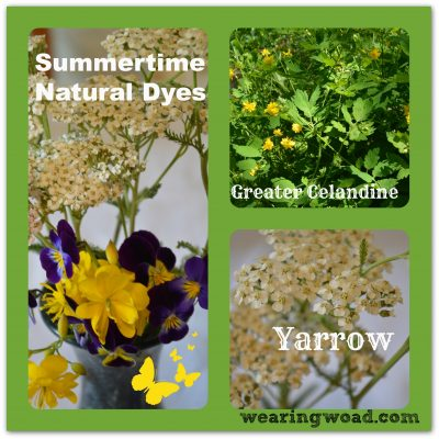 Top Three Late Spring to Summer Natural Dyes