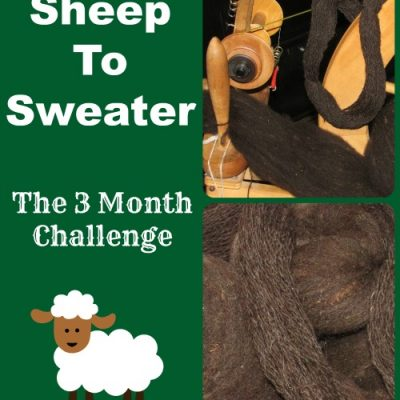 Sheep to Sweater Challenge: The Beginning