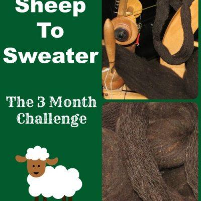 Sheep to Sweater Challenge: The Beginning