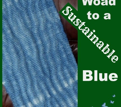 The Woad to a Sustainable Blue: Finding Sustainability in an Unsustainable World