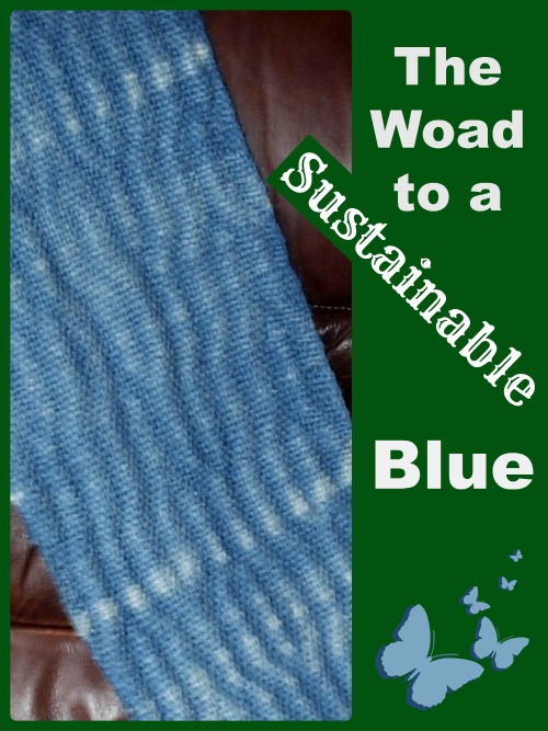 the woad to a sustainable blue part one