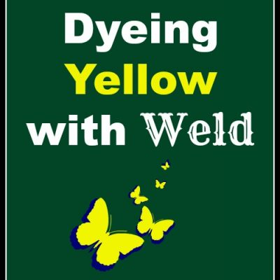 Natural Dyeing Yellow with Weld