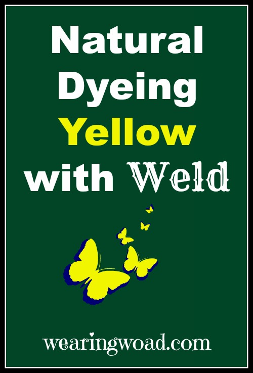 How to naturally dye yellow with Weld