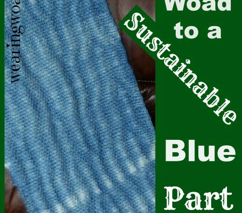 The Woad to a Sustainable Blue Part Four: The Modern View of Woad