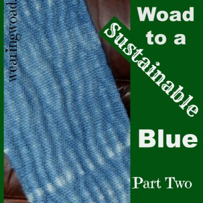The Woad to a Sustainable Blue: Why Does Woad Matter?