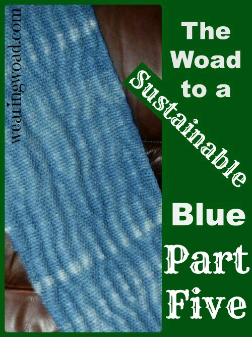 the woad to a sustainable blue_Part Five