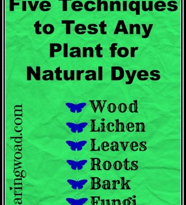 Five Techniques to Test Any Plant for Natural Dye Color
