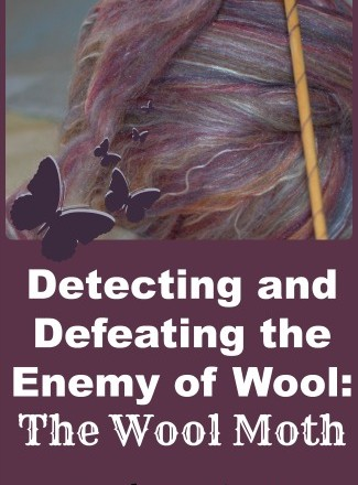Detecting and Defeating the Enemy of Wool: The Wool Moth