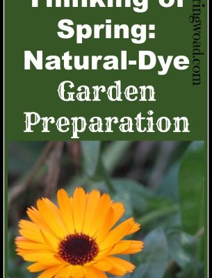 Thinking of Spring: Natural Dye Garden Preparation