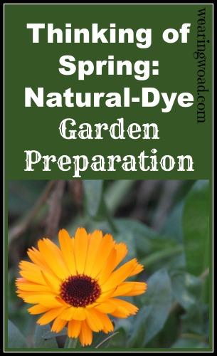 natural dye garden preparation_thinking of spring
