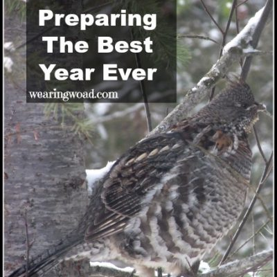 Preparing for the Best Year Ever: Organizing, Planning, and Purposeful Choice