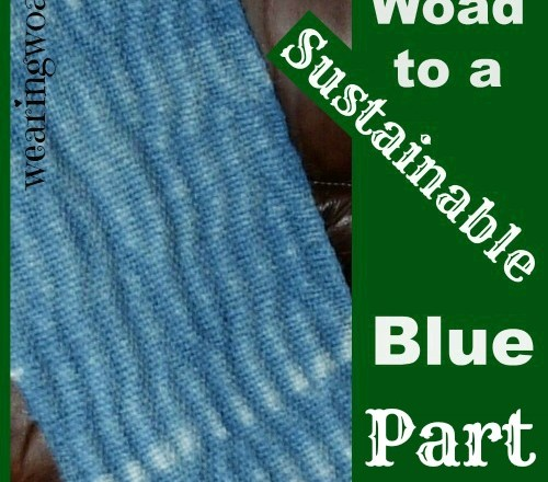 The Woad to a Sustainable Blue Part Six: My Woad Story