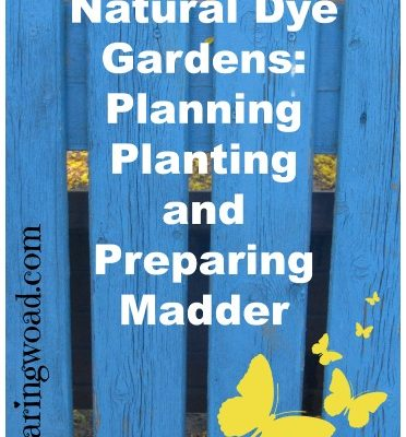 Natural Dye Gardens: Planning, Planting, and Preparing Madder