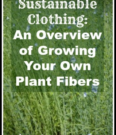 Sustainable Clothing: Growing Your Own Plant Fibers