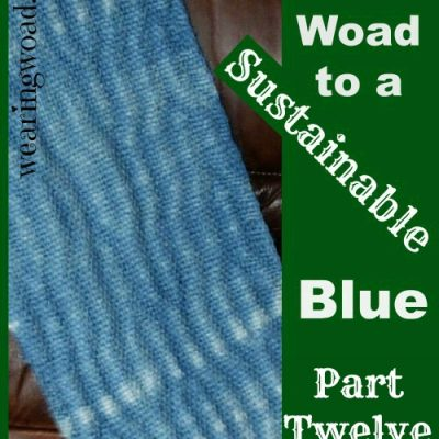 The Woad to a Sustainable Blue Part 12: Woad our Plant Ally