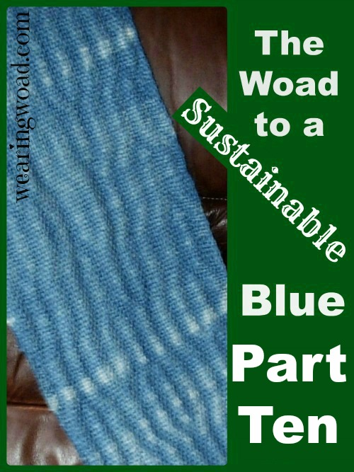 the woad to a sustainable blue_Part Ten