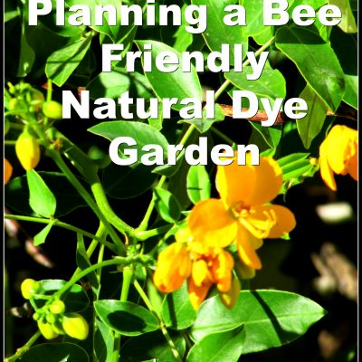 Save the Bees: Bee Friendly Dye Plants